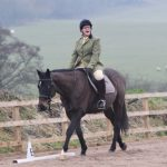 Dressage horse riding lessons